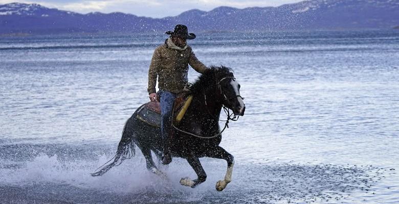cavaleiro-cavalo (Foto: Divulgação)