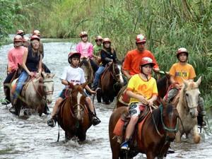 Cavalgada percorre trilhas que cortam ambientes naturais (Foto: Secretaria de Turismo/Divulgação)