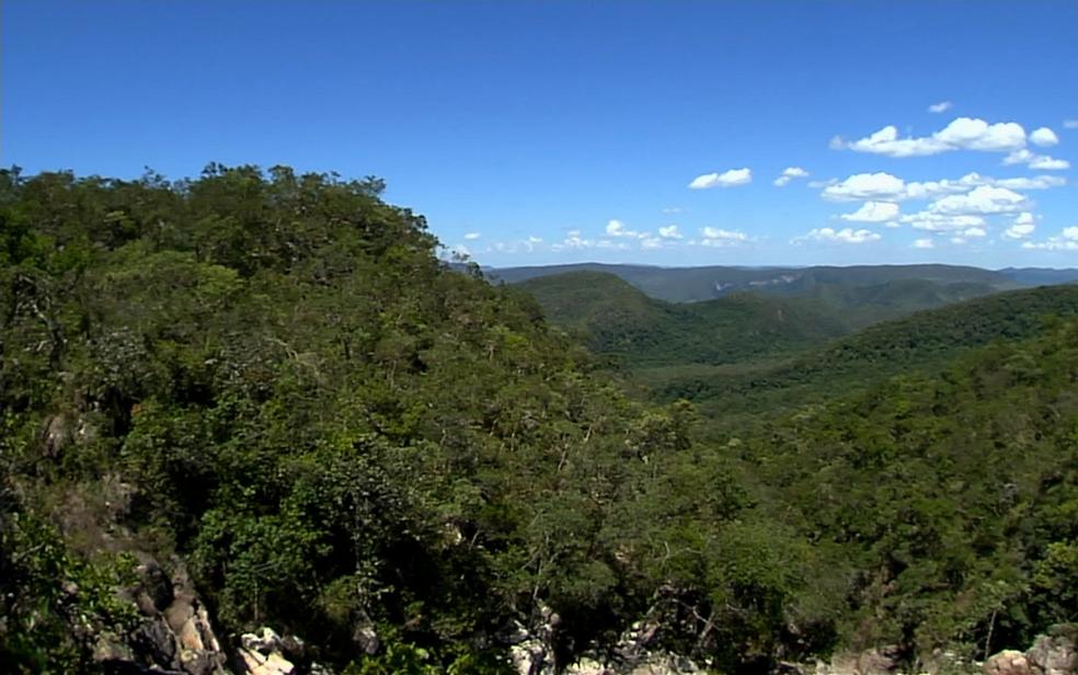 Parque pode ter área aumentada de 65 para 242 mil hectares (Foto: Reprodução/TV Anhanguera)
