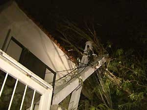 Árvore cai sobre residência em Campinas, SP (Foto: Reprodução/ EPTV)