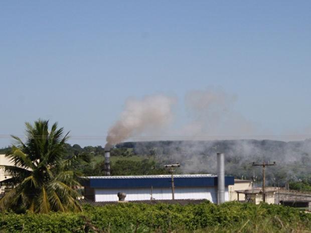 Fumaça indica a incineração dos bovinos abatidos em frigorifico. (Foto: Leandro J. Nascimento/G1)