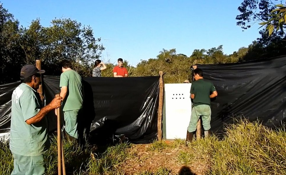 Estrutura foi montada para a soltura da onça em um área de reserva natural (Foto: Zoológico de Bauru / Divulgação )