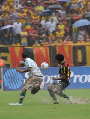 sport x palmeiras (Foto: Aldo Carneiro/ Pernambuco Press)