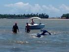 Monitoramento não acha sinal de baleia resgatada no Rio Sergipe