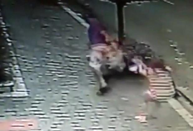 Ladrão rouba cachorro de dona em São Paulo (Foto: TV Globo/Reprodução)
