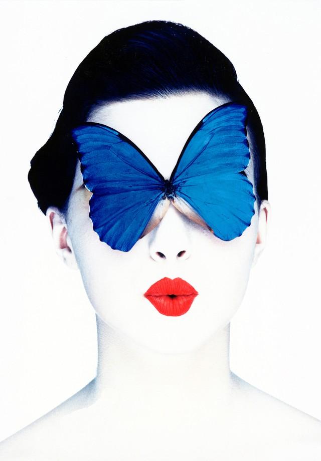 Papillon (Foto: Divulgação)