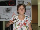 'Sem Niède, parque já teria morrido', diz presidente da SBPC no Piauí