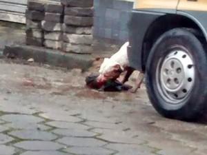 Pitbull atacou outro cão e causou revolta em Cubatão (Foto: Arquivo Pessoal)