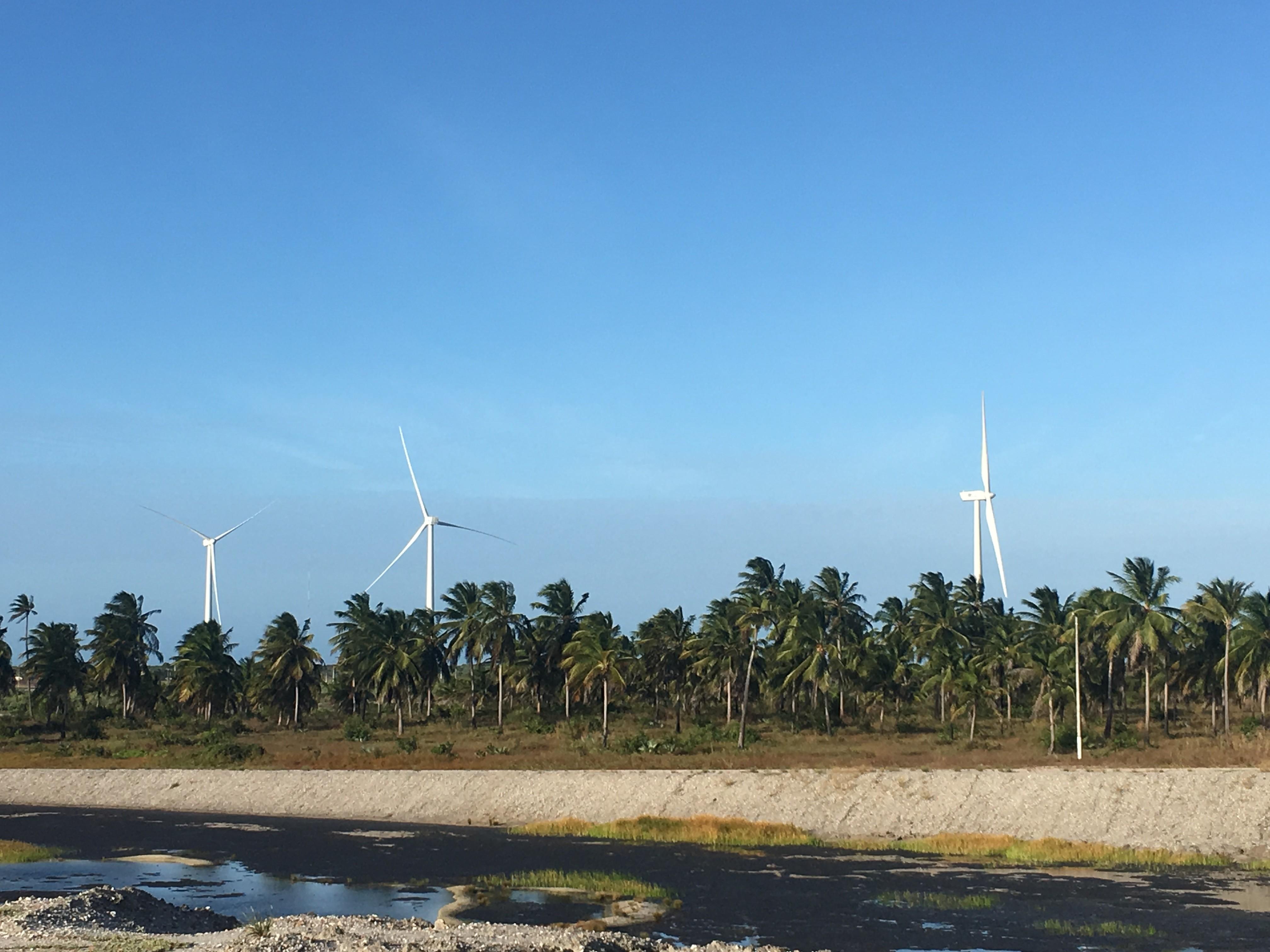 Parque éolico em Aracau, no Ceará, será capaz de gerar 33% da energia consumida em 15 fábricas (Foto: Divulgação)