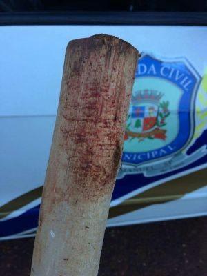 Dono agrediu cão a pauladas (Foto: Guarda Municipal/Divulgação)