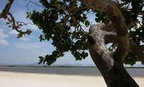 Famoso pelas belezas naturais, o Lago, fica a Nordeste de Roraima (Neidiana Oliveira/G1)