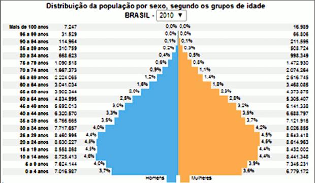 Gráfico com distribuição populacional (Foto: IBGE)