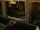 Cadeado de onde cobras foram furtadas não foi arrombado, diz polícia