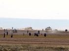 Turquia lança nova operação contra Estado Islâmico na Síria