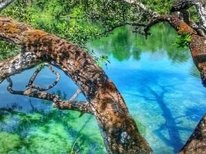 Ao chegar em Pindorama do Tocantins, turista deve seguir mais 40 km na estrada de chão para ir no lago (Foto: Deny Oliver/Divulgação)