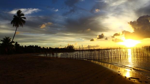 Pennsula de Mara, Bahia  (Foto: Rodrigo Mazzola/ Wikimedia Commons )