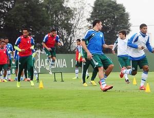 Grupo Palmeiras jogadores treino Kleina (Foto: Marcos Ribolli)
