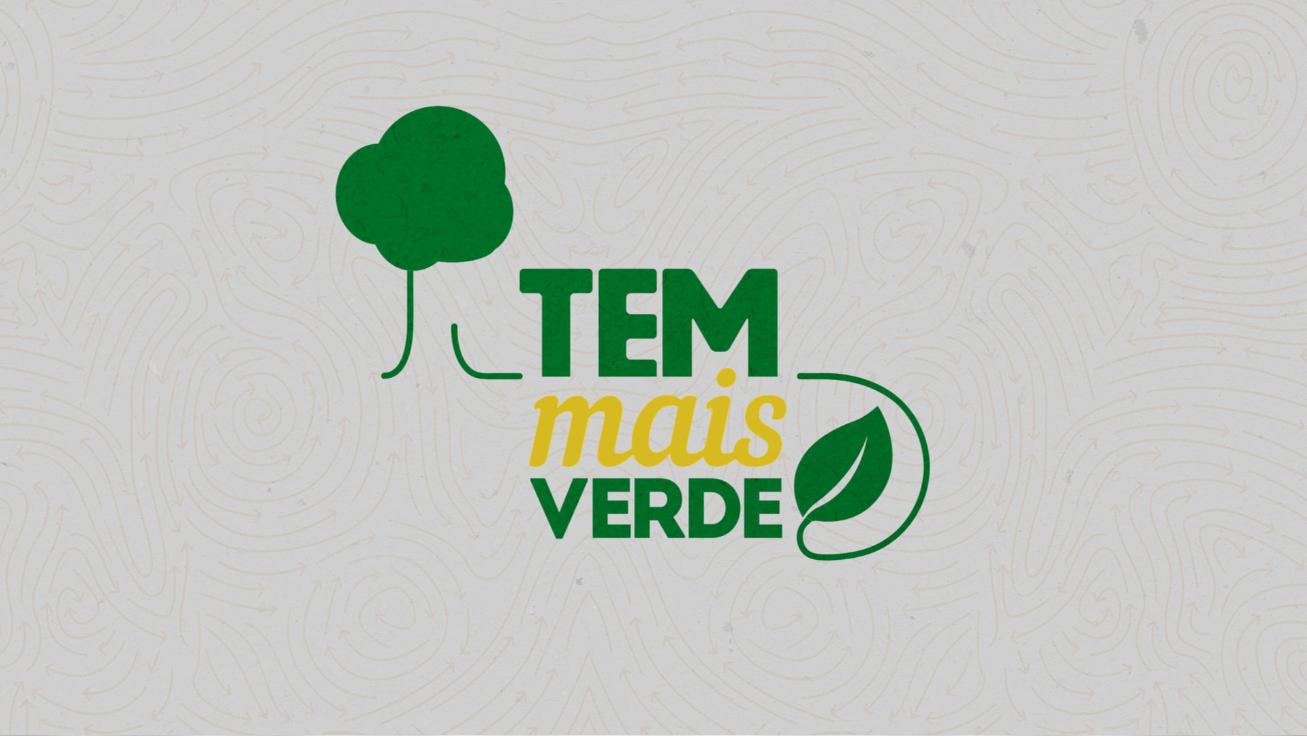 Logotipo Tem Mais Verde TV TEM (Foto: Reprodução/TV TEM)