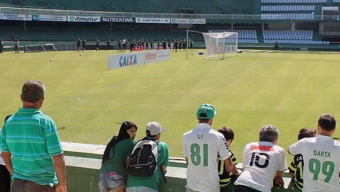 Coritiba; Couto Pereira; torcida (Foto: Site oficial do Coritiba/Divulgação)