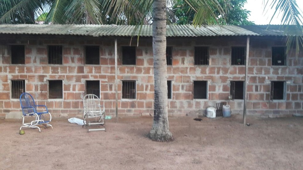 Suspeito escondia drogas em um galinheiro localizado em casa alvo dos policiais. (Foto: Divulgação / Polícia Civil)