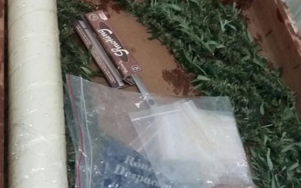 Além da maconha, polícia apreendeu porção da droga (Foto: Divulgação/Polícia Militar)