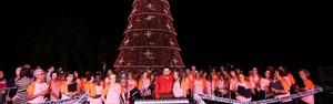 Árvore de Natal é atração nas celebrações (Marcelo Figueiredo/ Ascom Araruama)
