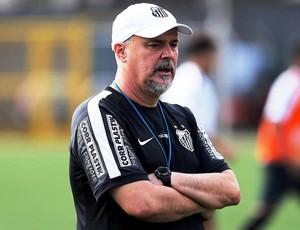 Pepinho Macia, técnico do Santos sub-20 (Foto: Pedro Ernesto Guerra Azevedo / Santos FC)