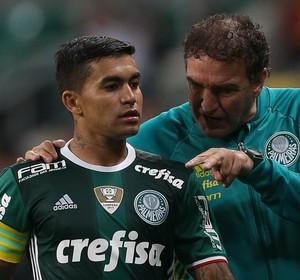 Dudu Cuca Palmeiras (Foto: Cesar Greco/Ag Palmeiras/Divulgação)