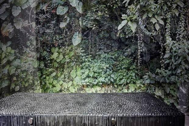 Raw Nature  (Foto: Ilana Bessler )