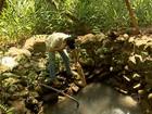 Falta de água afeta produção rural em cidades da Grande BH