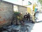 Com risco de epidemia, Exército vai atuar no combate à dengue em Lorena