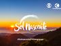 Envie fotos e vídeos do 'Sol Nascente' da sua cidade para a TV Integração
