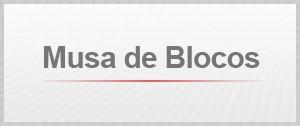 Musa de blocos (Foto: Editoria de Arte/G1)