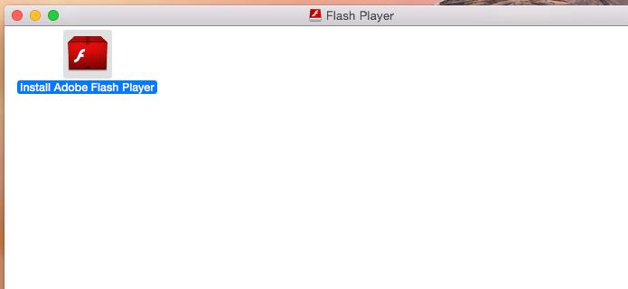 Iniciando o instalador do Flash (Foto: Reprodução/Edivaldo Brito)