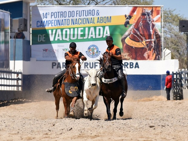 Acesso às provas do Campeonato de Vaquejada, em Bezerros, é gratuita (Foto: Divulgação)