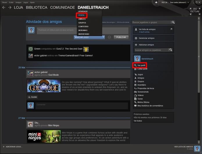 Selecione uma das opções indicadas na figura para abrir a interface com os detalhes de seu perfil (Foto: Reprodução/Daniel Ribeiro)