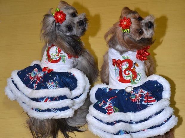 Cacau e Bombom possuem dezenas de vestidos para festas (Foto: Elke Blodorn / Arquivo Pessoal)