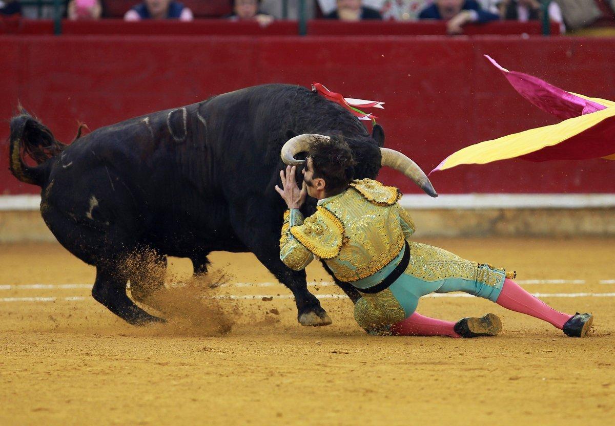 Padilla é golpeado por touro na arena de Zaragoza, em 2016