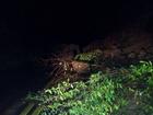 Deslizamento de terra interdita trecho da CE-065 em Palmácia
