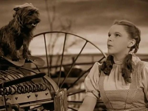 Globo News Um Dos Maiores Clássicos Do Cinema O Mágico De Oz