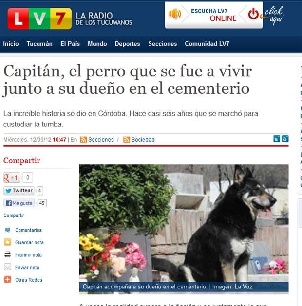 Cão zela túmulo do dono na Argentina há seis anos. (Foto: Reprodução)