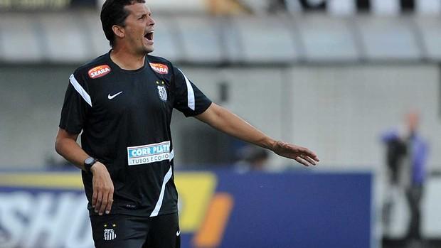 claudinei oliveira santos (Foto: Ivan Storti/Divulgação Santos FC)
