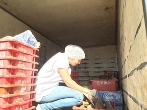 Carga de pescado vinda da Bahia também foi analisada (Foto: Paulo Ricardo Sobral/ TV Grande Rio)