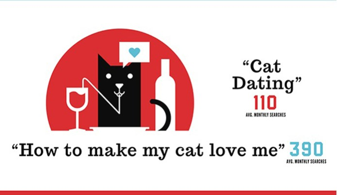 Busca deprimente sobre como ganhar o amor de animais é feita constantemente por pessoas de todo mundo (Foto: Reprodução)