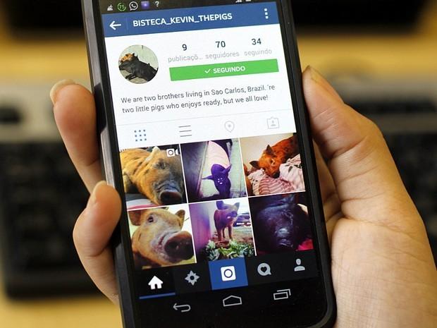 Perfil na rede social de fotos Instagram (Foto: Fabio Rodrigues/G1)