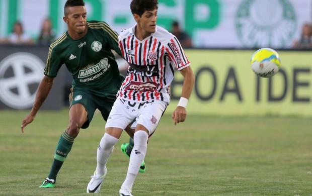 Paulista x Palmeiras (Foto: Celio Messias / Ag. Estado)