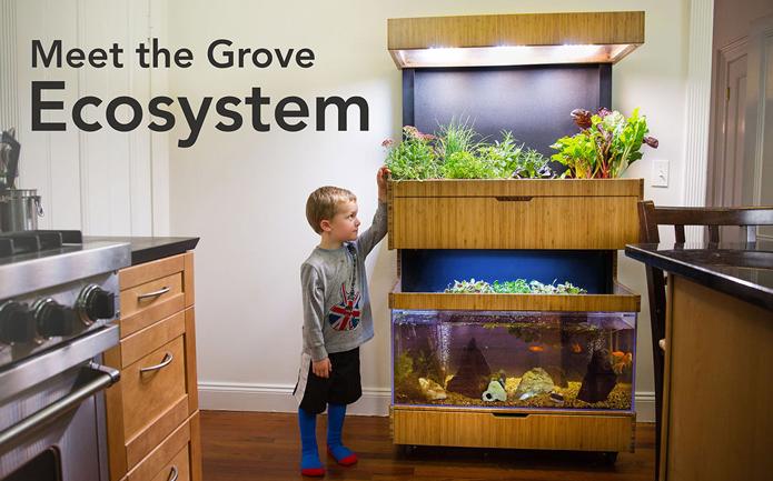 Grove Ecosystem é uma horta inteligente que permite cultivo de vegetais em casa (Foto: Divulgação/Grove Ecosystem)