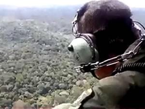 FAB afirma que mata fechada dificulta buscas. (Foto: Divulgação/Grupamento Aéreo de Segurança Pública do Pará (Graesp))