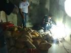 Agentes penitenciários encontram novo túnel em prisão do TO