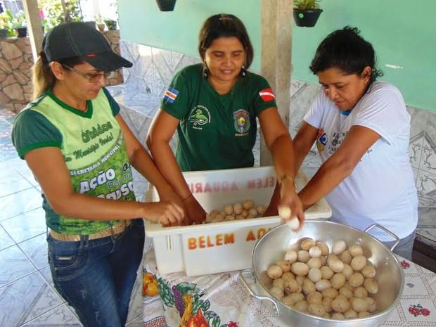 Ovos foram doados a uma instituição (Foto: Divulgação/Ascom PMO)